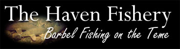 The Haven Fisheries